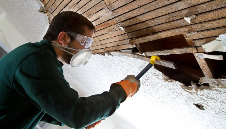 Mold Removal 1
