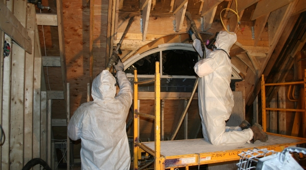 Mold Removal 2