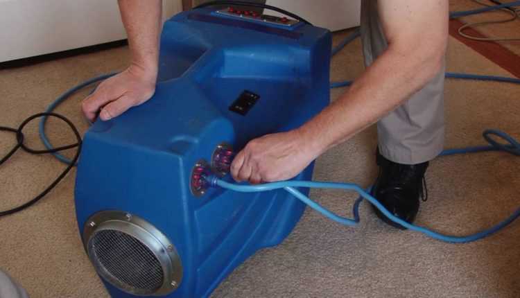 Heat Treatment For Bed Bug Control