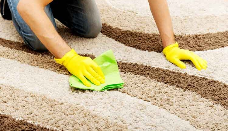 Clean Your Carpet and Maintain